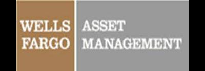 Wells Fargo Advantage Multi-Sector Income Fund