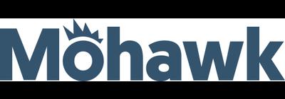 Mohawk Group Holdings